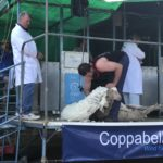 Sponsorship of the Speedshear Event in Bookham