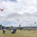 Sponsorship of the Harden Kite Festival